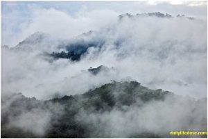 Cloud Forests Ecuador - Dailylifedose