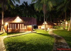 Hotels in Andaman and Nicobar Island - dailylifedose.com