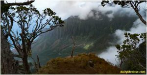 Nature of Kauai & United States - Dailylifedose