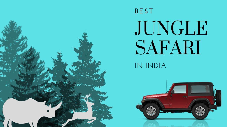 Jungle Safari in India
