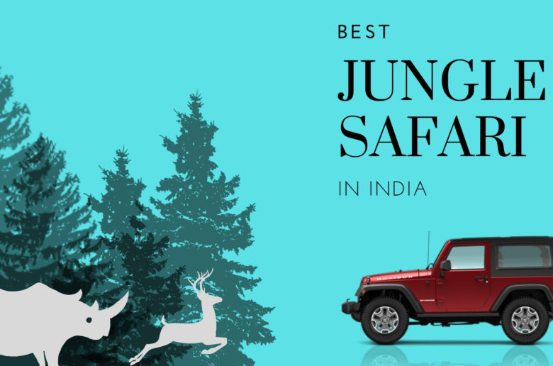 Jungle Safari in India